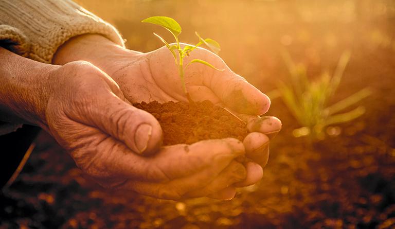 Realizamos un trabajo constante de estudio para reducir el impacto sobre nuestro ecosistema
